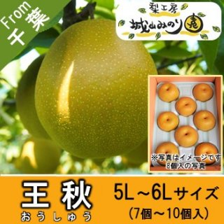 【N-N5 王秋 5L・6Lサイズ \4000】 千葉の梨 10月の梨 日持ち