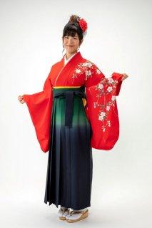 【レンタル】袴セット  20点フルセット 018-001 小振袖:赤桜 × 袴:グリーンぼかし