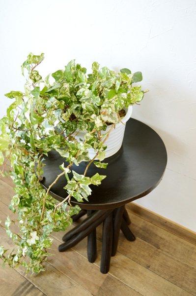 【7月上旬入荷予定】ARチークの根の花台サイドテーブル(ダークブラウンカラー)