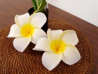プリメリア造花 L 2個セット