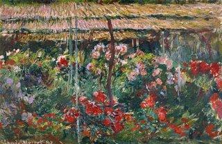 芍薬の花園