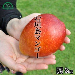 石垣島マンゴー ときわ農園 訳ありマンゴー商品画像 3キロ