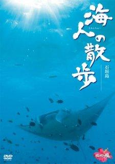 海人(うみんちゅー)の散歩【石垣島】[DVD]