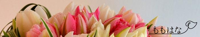 静岡市葵区安東の小さな花屋 ももはな 