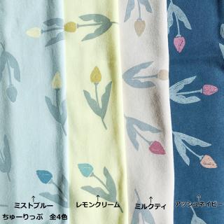 ちゅーりっぷ-40/20ミニ裏毛