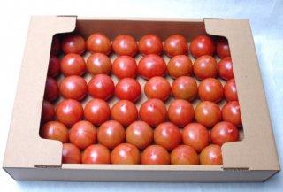 深層水トマト3�箱