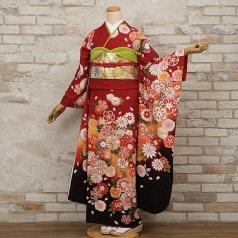 振袖 フルセット 花柄 Lサイズ 赤・ワイン系 (中古 リユース 美品) 16903