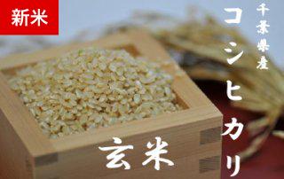 千葉県産コシヒカリ 20kg