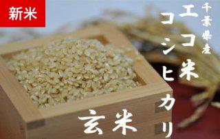 エコ米コシヒカリ 20kg