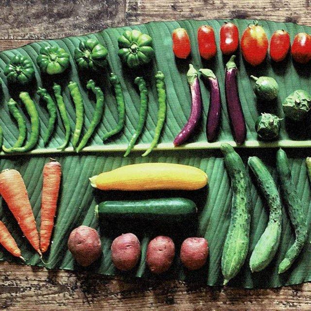 ワッカファーム / 無農薬・無化学肥料 旬の野菜セット
