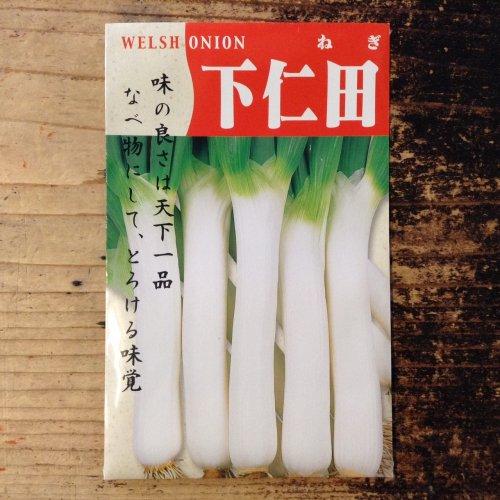 浜名農園 / 伝統野菜種子 下仁田ねぎ