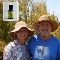 2019年6月産  マオリ族の伝承 マヌカの仲間 最適の生育環境から生まれる優しい甘みを持った無農薬レモンティーツリー精油 10ml (メール便可)