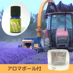 【SALE】 2017年産 一大プロジェクトから生まれた高品質で安全性の高い 無農薬ニュージーランド真正ラベンダー精油 5ml (メール便可)