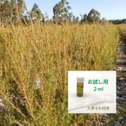 2019年12月産 爽やかさと甘さの香り成分の調和に魅せられる アロマ香水に 無農薬フラゴニア精油2ml  ( メール便可)