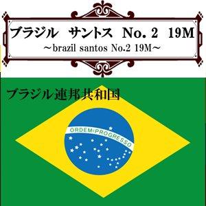 ブラジル・サントスNo.2 19M(200g)