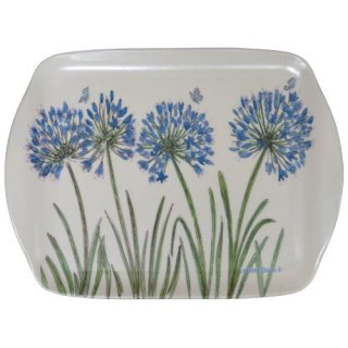 <br>Caroline Cleave 【EBMMD61】<br>Medium Tray トレイ<br>Agapanthus