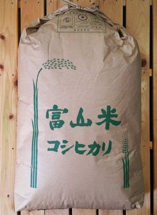 こしひかり 玄米30kg