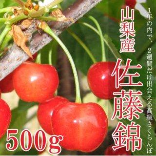 【予約販売】極上のサクランボ(佐藤錦)500g化粧箱ギフト