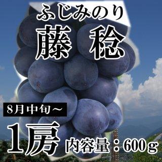 【クール便】藤稔(ふじみのり)1房ギフト