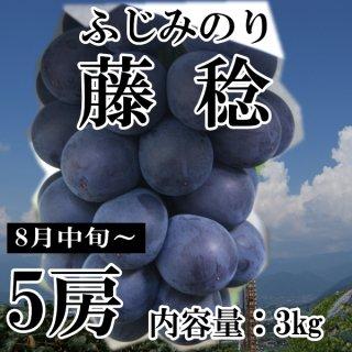 【クール便】藤稔(ふじみのり)5房ギフト