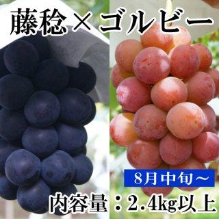 ゴルビーと藤稔2.4Kギフト