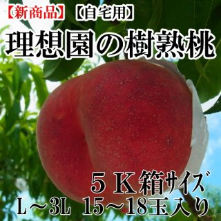 理想園の樹熟桃 5K箱15玉〜18玉入り(自宅用)