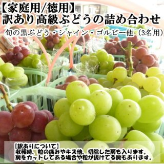 【クール便】訳あり高級ぶどう食べ放題用 3名様(約4.5K以上)
