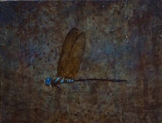 Dragonfly �