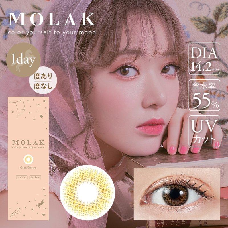 MOLAK 1day(10)/ コーラルブラウン