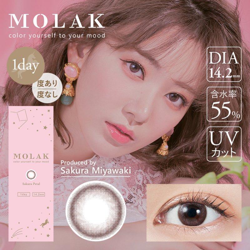 MOLAK 1day(10)/サクラペタル