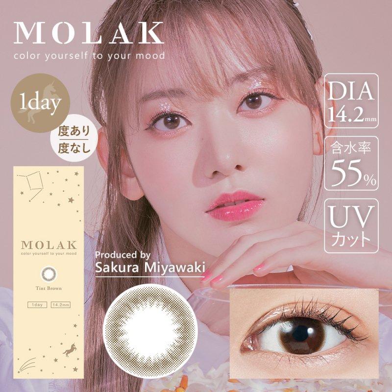 MOLAK 1day(10)/ティントブラウン