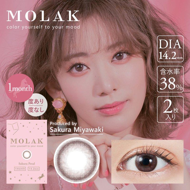 MOLAK 1month(2)/サクラペタル
