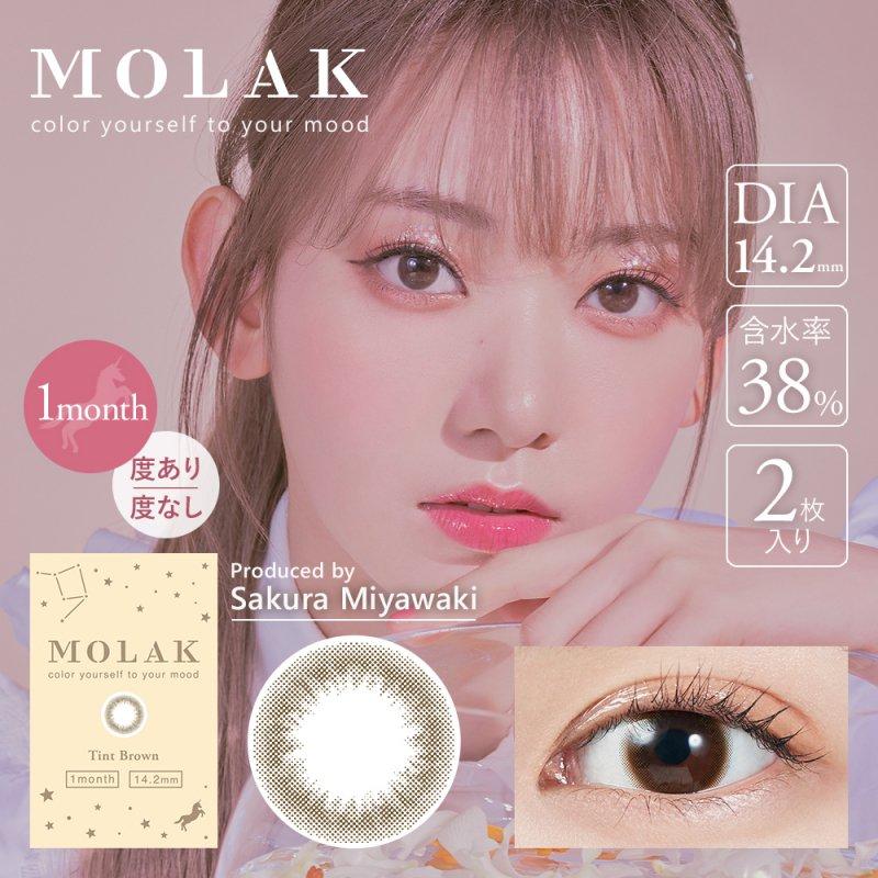 MOLAK 1month(2)/ティントブラウン