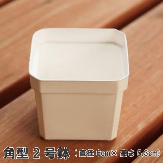 角型2号鉢(白)