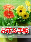【生シェイクカフェオープン祝い!】 店頭へ飾るお花(名札付き) & 店長から感謝のお手紙(6/10まで)