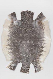 トカゲ革/Lizard(ナチュラル)L-51