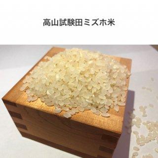 コシヒカリ(2�)