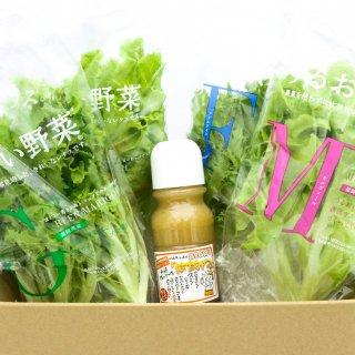 うるおい野菜4種とはちみつドレッソースセット