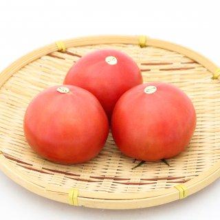 九州産 トマト