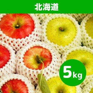 北海道にお届け【9月上旬】米崎りんご(さんさ&きおう)詰合せ「秋の訪れ」 5kg