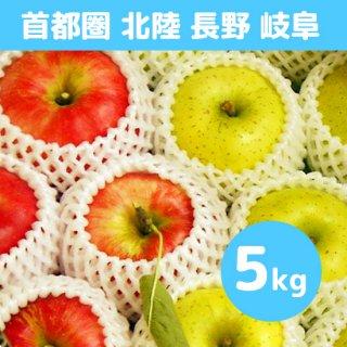 首都圏・北陸・長野・岐阜にお届け【9月上旬】米崎りんご(さんさ&きおう)詰合せ「秋の訪れ」 5kg