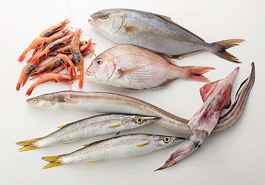 旬のお魚Mセット:下処理なし