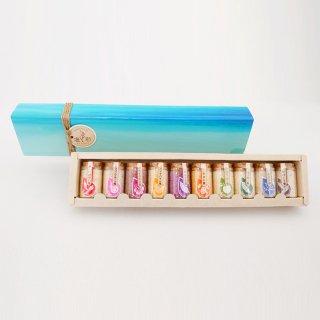 塩彩ミニボトル10種類セット