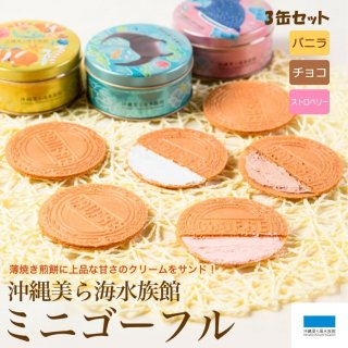 沖縄美ら海水族館ミニゴーフル 3缶入