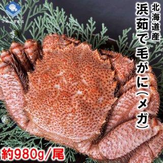 【20%OFF中】 浜茹で毛がに 北海道産 約980g メガサイズ 堅ガニ 1尾入 条件付き送料無料
