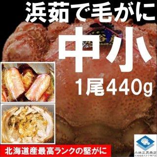 【20%OFF中】 浜茹で毛がに 北海道産 約440g 中小サイズ 堅ガニ 1尾入 条件付き送料無料