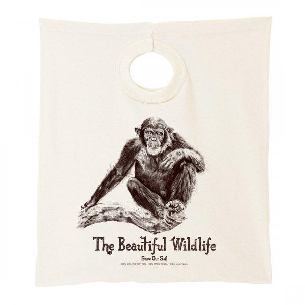 The Beautiful Wildlife