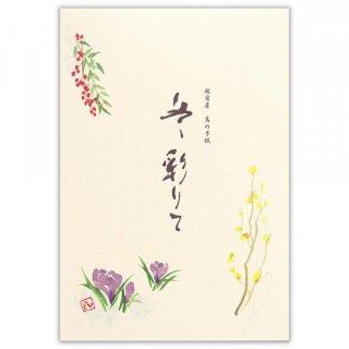 TWF B5便箋 彩り