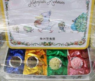 掛川花鳥園オリジナル<br>ゆとり屋コラボ<br>クランチチョコ缶