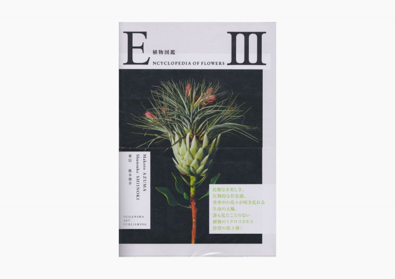 Encyclopedia of Flowers � 植物図鑑